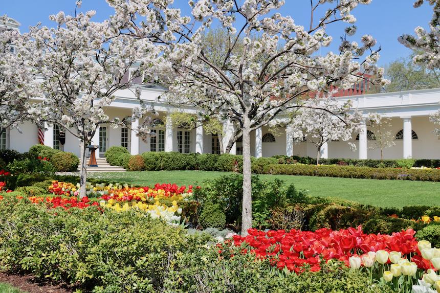 5 rzeczy, które można zobaczyć w ogrodach Białego Domu