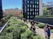 High Line w Nowym Jorku