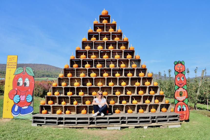 Amerykańska jesień, dekoracja na farmie dyniowej