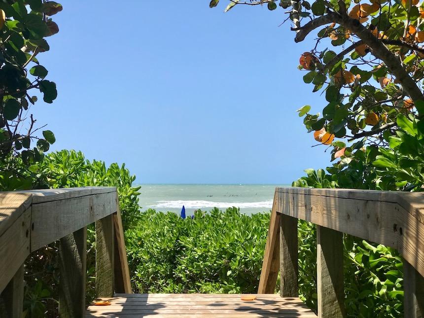Plaże, parki rozrywki i aligatory. Wakacje na Florydzie