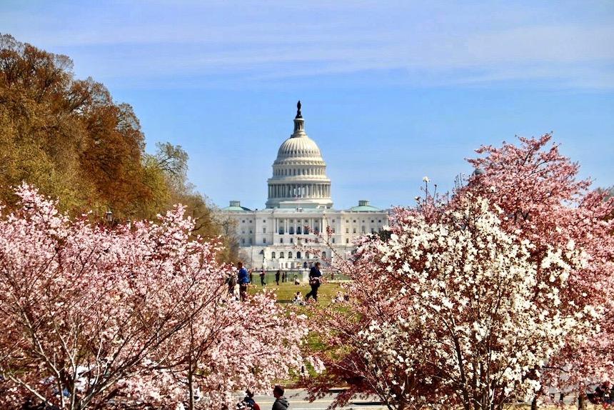 Co zobaczyć w Waszyngtonie? Lista największych atrakcji